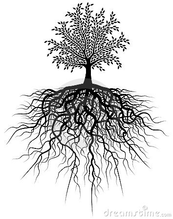 árvore-da-raiz-3975938